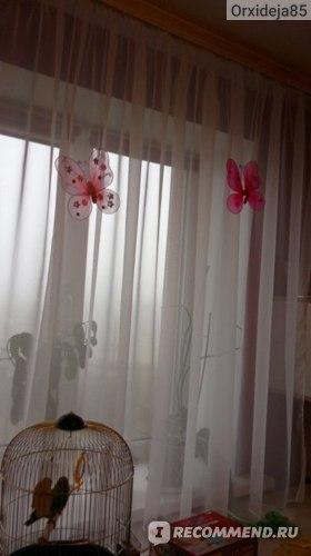 Бабочки, прикрепленные на тюль (день)