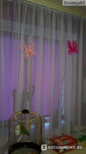 Бабочки, прикрепленные на тюль (вечер)