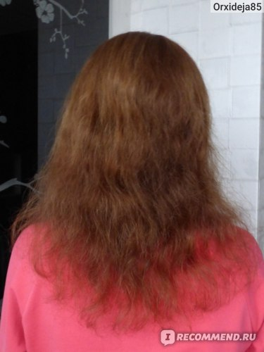 Состояние волос в начале использования (высушены феном)