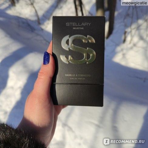 Stellary Vanille & Tabacco