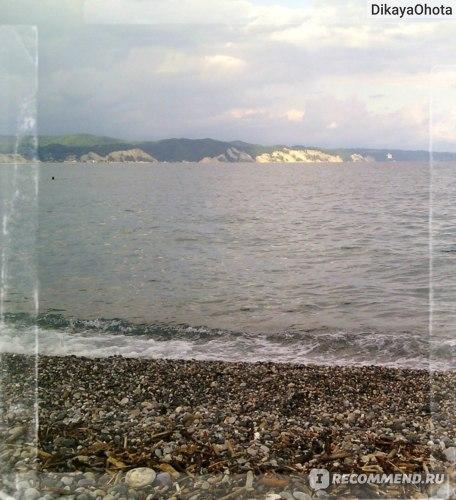 Абхазия. Пицунда фото