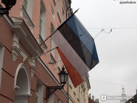 Флаги Эстонии и Тарту