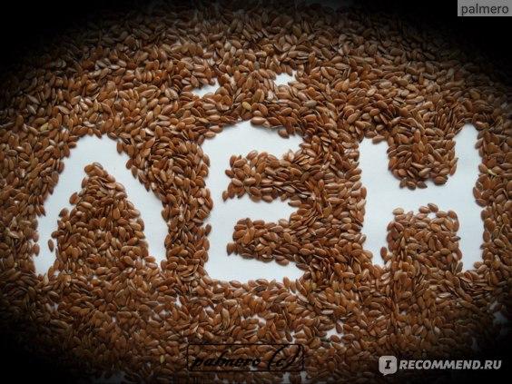Лекарственные травы  Семена льна фото