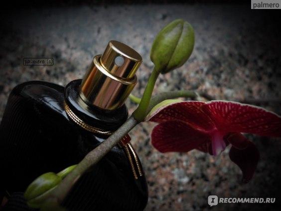 Tom Ford Black Orchid фото