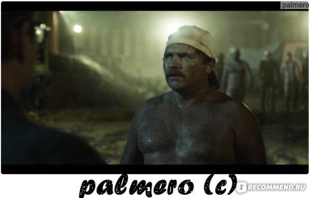 Чернобыль фото