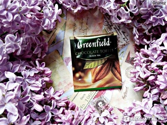 Чай Гринфилд (Greenfield) Chocolate Toffee (Шоколад Тоффи) черный в пакетиках фото