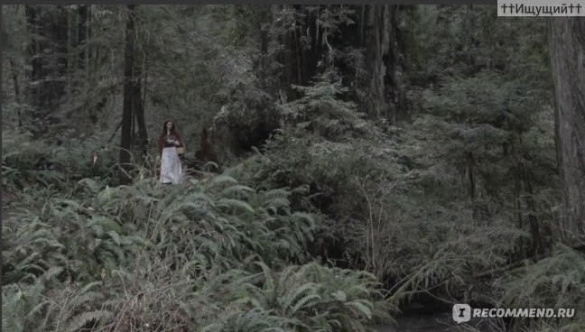 Красная шапочка / Little Red Riding Hood (2015, фильм) фото