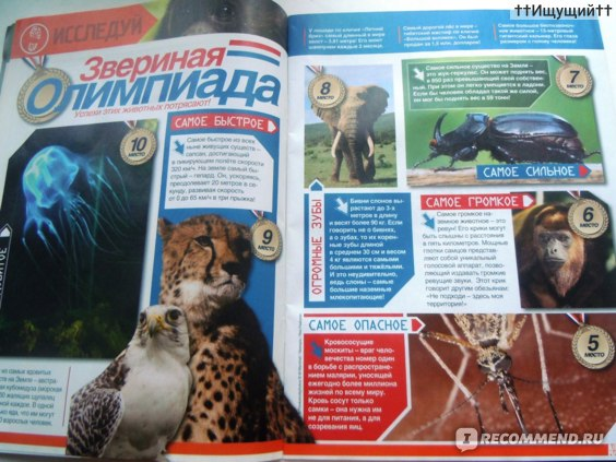 """""""Animal Planet. Детский клуб"""" познавательно-развлекательный журнал  фото"""