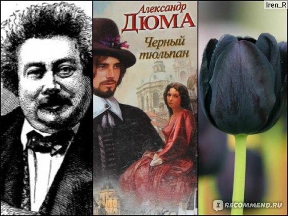 Дюма-отец (Dumas Pere), книга как она есть, чёрный тюльпан :)