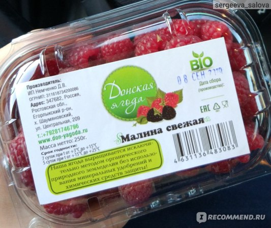 Малина  Донская ягода фото