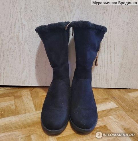 Сапоги женские зимние T.Taccardi Артикул: 5838824 фото