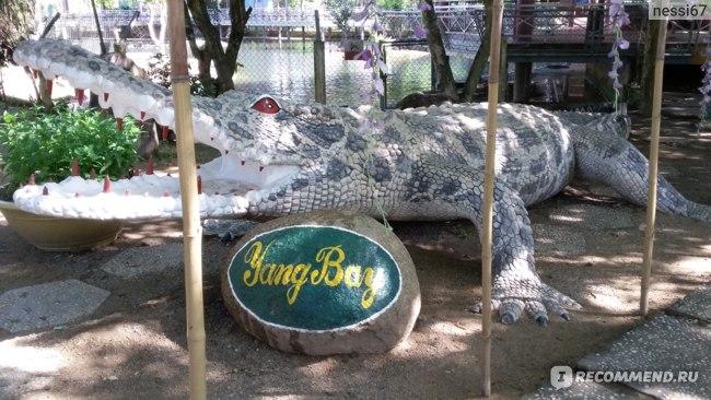 Вход на крокодиловую ферму, охраняемый самым большим из всех!