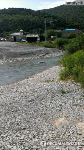 Речка с прохлаждающейся в ней собакой