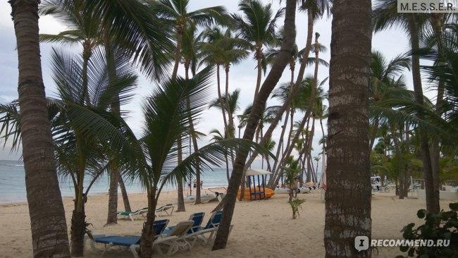 Вид на пляж с прогулочной дорожки
