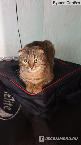 "Рюкзак для ручной клади Ifrit ""SkyMax"" фото"