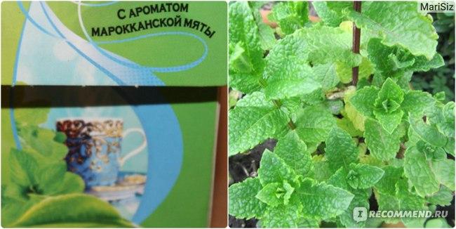 Чай в пакетиках Lipton Moroccan mint Green tea фото