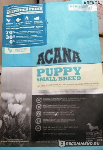 ACANA small puppy breed ( для щенков мелких пород ) фото
