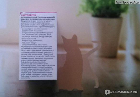 Функциональный корм Веда Лактоферон - пробиотик с фитокомплексом для иммунитета фото