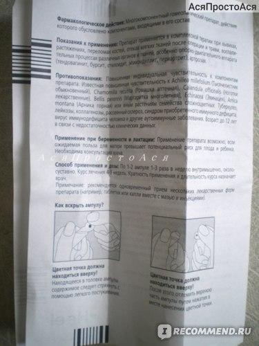 Изображение - Траумель при артрозе коленного сустава xH9qBGskkNAurJm4Yeyg