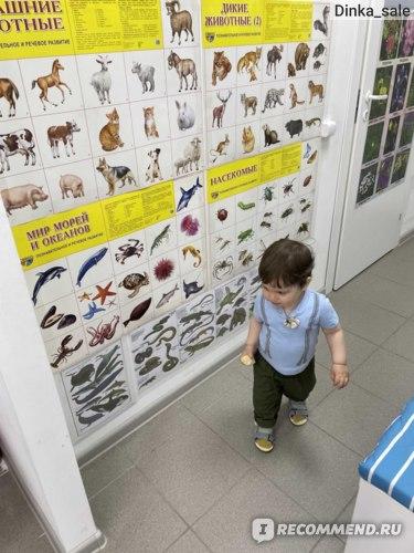 Детский центр развития детей Аистенок, ВОЛОГДА фото