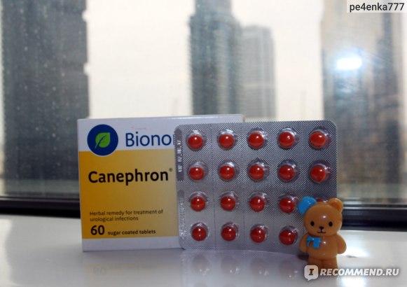 Растительный лекарственный препарат Bionorica КАНЕФРОН Н в таблетках фото