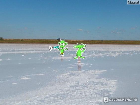 Бурлинское озеро фото