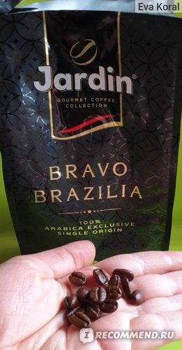Кофе в зёрнах Jardin Браво Бразилия 100% Arabica exclusive  фото