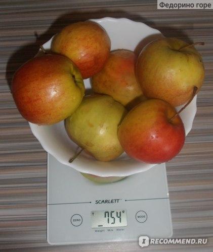 Яблоки (взвешены без учета тарелки)