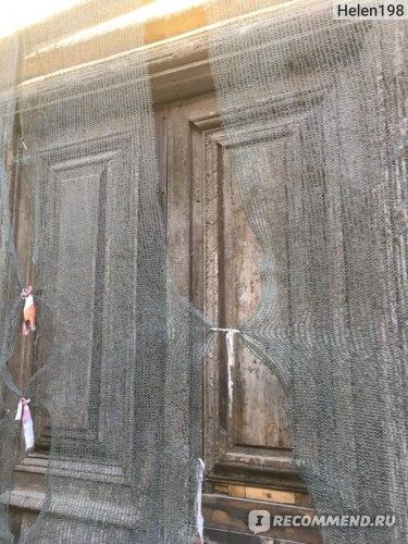 Дверь за сеткой, сразу и не разглядишь