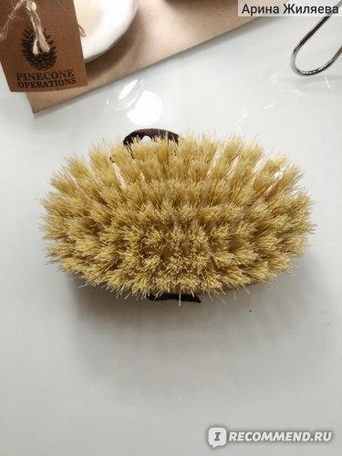 Щетка для сухого массажа с щетиной из кактуса Elabee фото