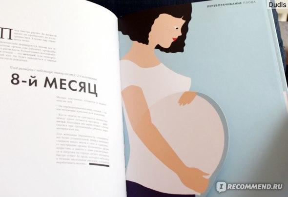 Рождение. Интерактивный атлас с клапанами и резными иллюстрациями. Элен Дрювер фото
