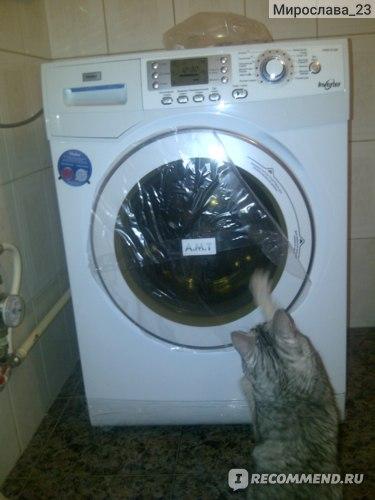 Кошь участвует в распечатывании машинки!