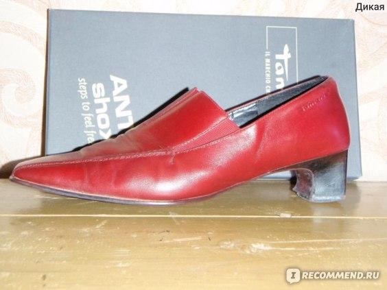 Туфли осенние Tamaris  фото