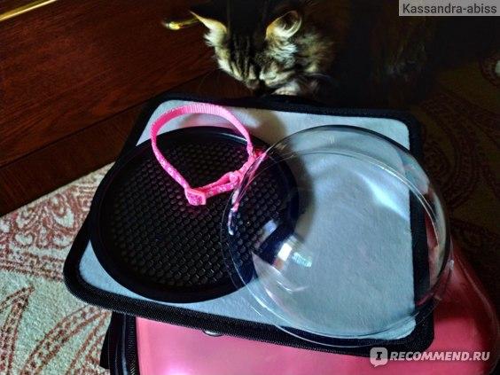 Рюкзак-переноска с иллюминатором Буся для котов и собак мелких пород фото