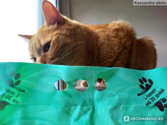 Наполнитель для кошачьего туалета Cat Step Tofu Green Tea 6L фото