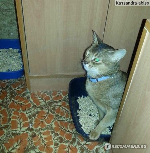 Древесный наполнитель для кошачьего туалета Чистые лапки фото