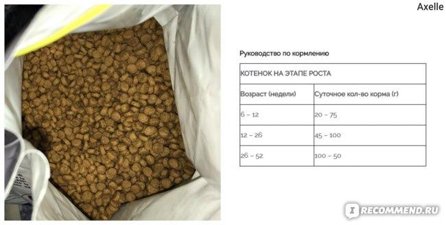 Pro Plan Junior / сухой корм для котят и кормящих кошек, курица фото