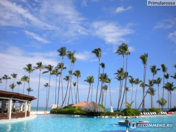 Доминиканская республика (Доминикана) фото