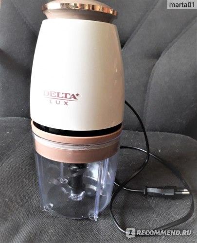 Измельчитель Delta Lux DL-7419 фото
