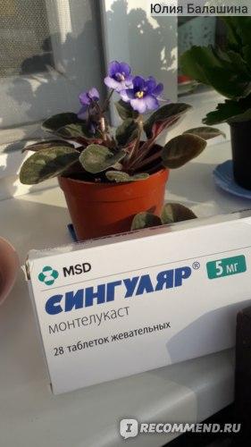 Средства для лечения аллергии MERCK (ФРГ) Сингуляр фото