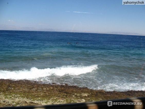 Тот самый вид на море. Где-то там на другом берегу Саудовская Аравия