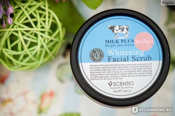 Скраб для лица Scentio Milk Plus Whitening фото