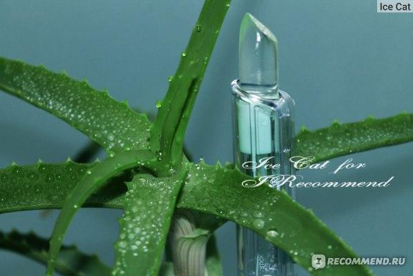 Гигиеническая помада Belweder Stick Levres protecteur с алоэ, ромашкой и а-бисабололом фото