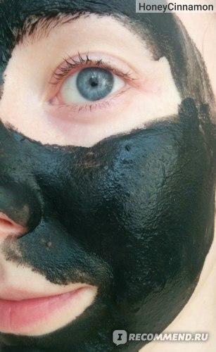 Маска для лица Pleyana с Тамбуканской грязью, горофитом граната и эхинацеи фото