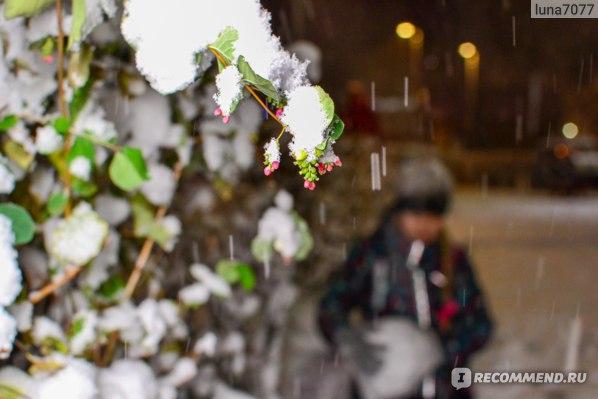 Nikon D3100 + Nikon 35mm f/1.8G AF-S DX Nikkor  + Yongnuo YN-360 III RGB