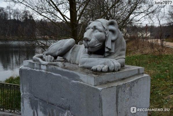 Львы в Кузьминках