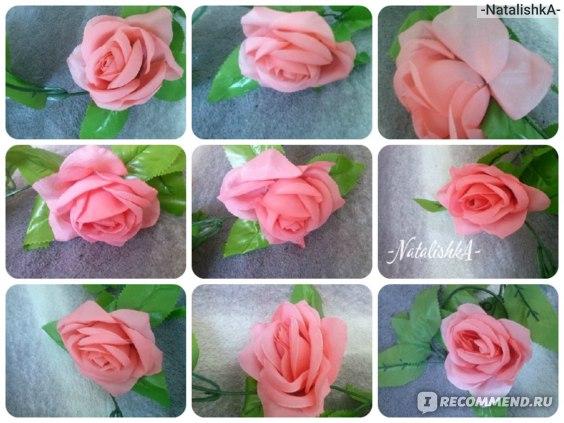 9 помявшихся цветов