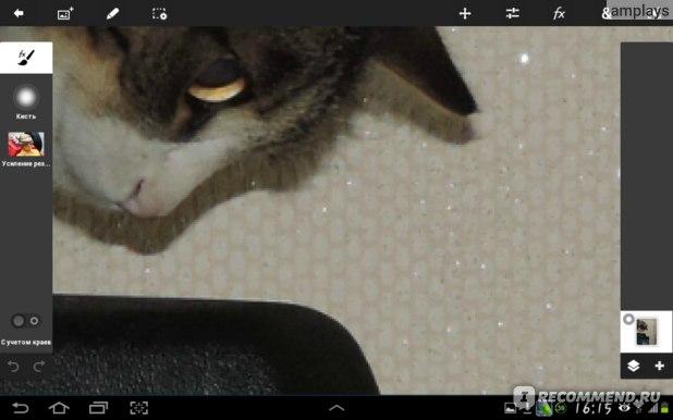 а вот скриншот той же фотки с котэх (увеличение 400%)