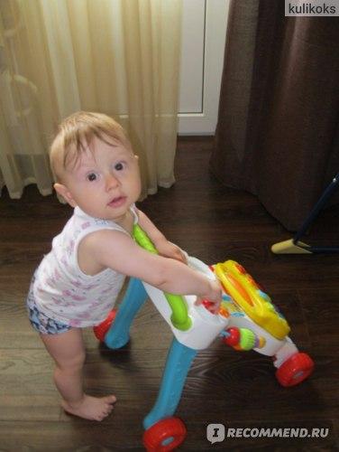 BabyGo Каталка-ходунки фото