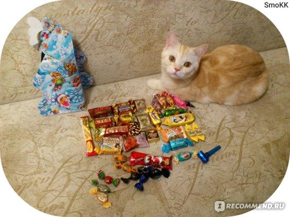 """Детский новогодний подарок  """"Елка"""" фото"""